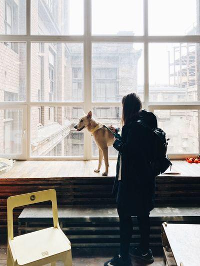 Loft Pets