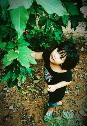 randomly taken with my sony experia z1 compact Kidsphotography One Person Leaf Outdoors Beauty Tree Nature High Angle View Sarawak Borneo
