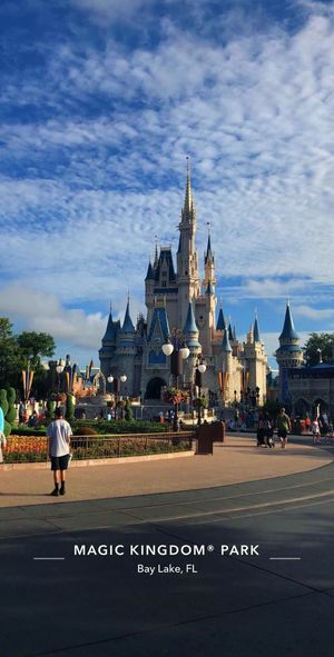 ✨ Castle Magic Disney Florida Disneyland Architecture Building Exterior Built Structure Religion Belief Sky Place Of Worship Building Travel Destinations Cloud - Sky Real People Incidental People Walking Spirituality Outdoors Spire  City Nature Travel Tourism