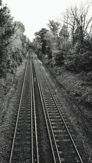 destination unknown Photowalktheworld Tree Railroad Track Rail Transportation Sky Railroad Tie Straight vanishing point Railway Track The Way Forward Long Treelined Track Train Track Track - Imprint Gravel