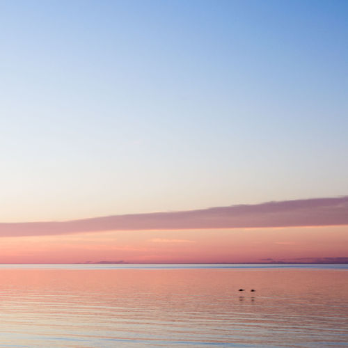Baltic Sea Beach Beauty In Nature Birds Blue Calm Flying Idyllic Lativia Nature No People Non-urban Scene Orange Orange Color Outdoors Pink Remote Rippled Scenics Seascape Sky Sunset Tranquil Scene Tranquility Water