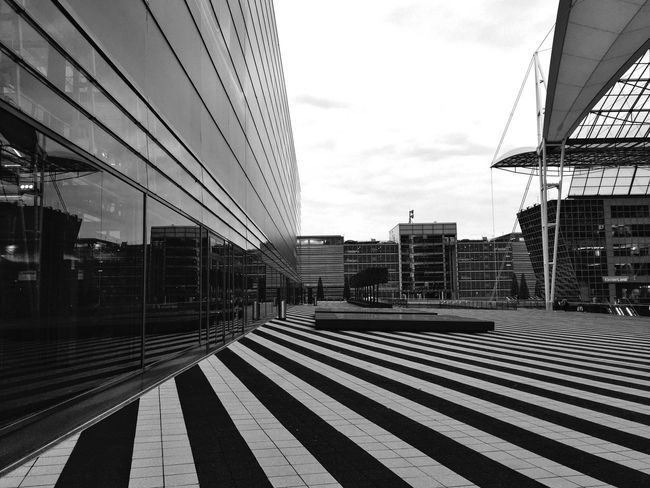 Lines ... 🚶🏻 Tadaa Community Monochrome Blackandwhite From My Point Of View Airport Urban Geometry Urbanphotography EyeEm Best Shots - Black + White Fortheloveofblackandwhite Mpro