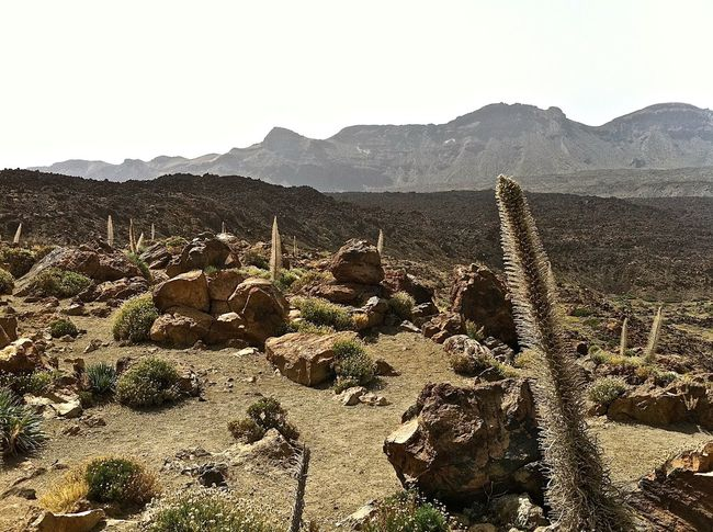 Ancient Civilization Arid Climate Balance Brown Canary Islands Damaged Day Geology Leading No People Old Old Ruin Outdoors Physical Geography Rock Ruined Stack Stone Stone - Object Stone Wall Teide National Park Tenerife Textured