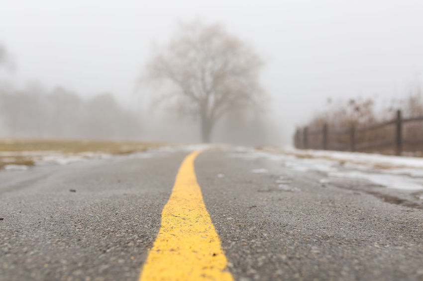 walking path with heavy fog Tree Snow Winter Fog Road Cold Temperature Yellow Bare Tree Asphalt Surface Level Empty Road The Way Forward Winding Road Treelined Double Yellow Line Pathway Country Road vanishing point Diminishing Perspective Yellow Line Dividing Line Road Marking Foggy