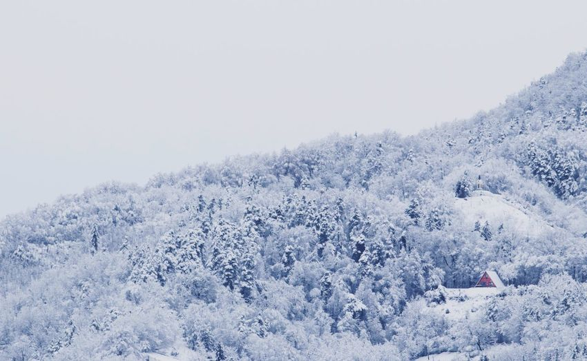 Slovenia Tranquility Wintertime Beauty In Nature Cold Temperature Maribor Nature Nature_collection Nature_perfection Naturelovers Scenics Snow Tranquil Scene Winter Winter Trees Winter Wonderland