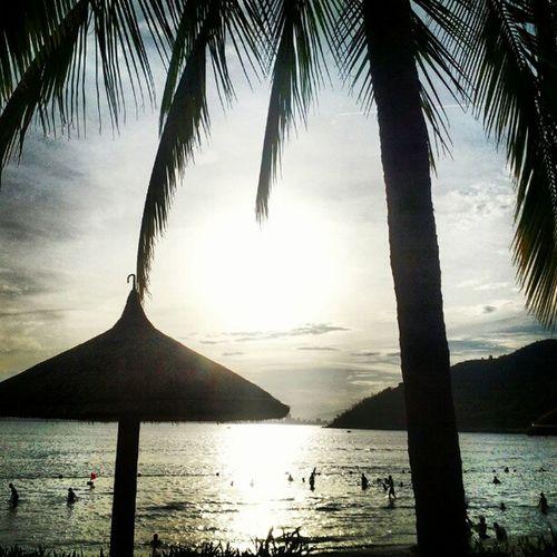 Paradise in Vietnam. Sunset Palmtrees Vacation