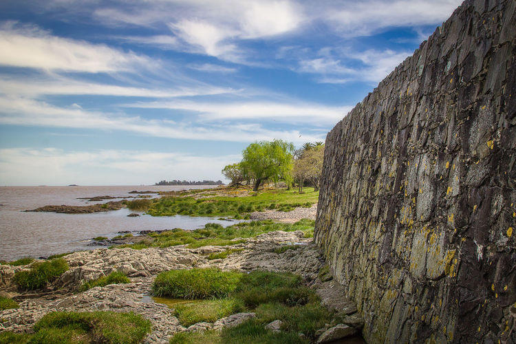 A view of a beach with some trees and a old wall Beauty In Nature Cloud - Sky Day Grass Land Nature No People Non-urban Scene Outdoors Plant Rock Rock - Object Scenics - Nature Sky Solid Tranquil Scene Tranquility Tree Water