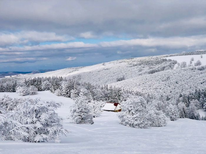 Lonely house in the mountains surrounded by forest covered in snow Frozen WoodLand Idyllic Trees Forest Outdoors Nature Day Isolated Remote Building Architecture Chalet Cabin House Mountain Range Snow Winter Cold Temperature Cloud - Sky Sky Scenics - Nature Mountain Snowcapped Mountain Environment White Color Beauty In Nature Landscape Non-urban Scene Tranquility