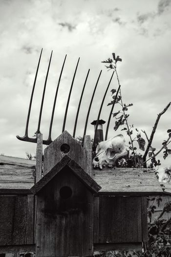 Photo essay. September 2016 Southeast Nebraska 35mm Camera A Day In The Life Americans Birdhouse Black And White Camera Work Composition Daily Journal Daily Life Eye For Photography EyeEm Best Shots EyeEm Best Shots - Black + White Eyeemphoto Fine Art Photography Folkart FUJIFILM X100S Nebraska No People Photo Essay Pitchfork Rural America Shoot Your Life Skull Small Town Stories Weathered