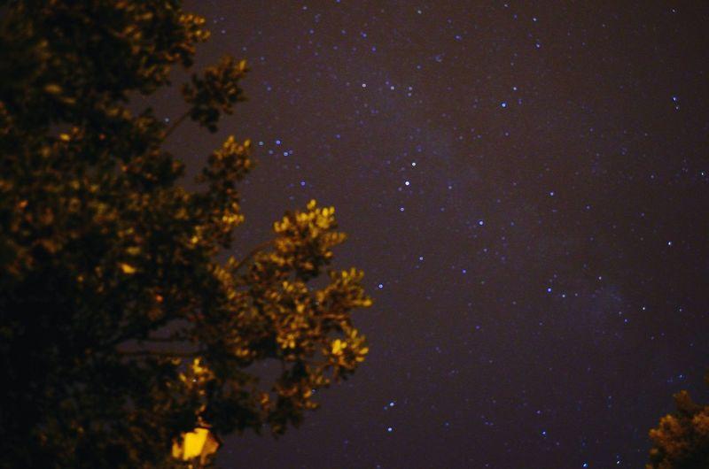 Starry Sky Night Forest By Night Oujda City, Morocco Sidi M3afa Oujda الحمد لله سبحانك ربي
