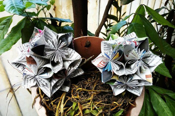The OO Mission Double Kusudama Flower Kusudamaflower Papercraft Newspaper Variation Nature