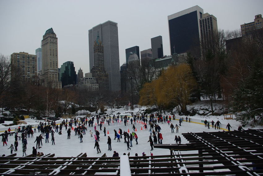 Ice ring at Central Park - New York City, United States 2011 Architecture Building Exterior City Cityscape Cold Temperature Day Ice Rink Ice-skating Large Group Of People Nature Outdoors People Sky Skyscraper Snow Sport Travel Destinations Tree Urban Skyline Winter Winter Sport Central Park Ice Ring