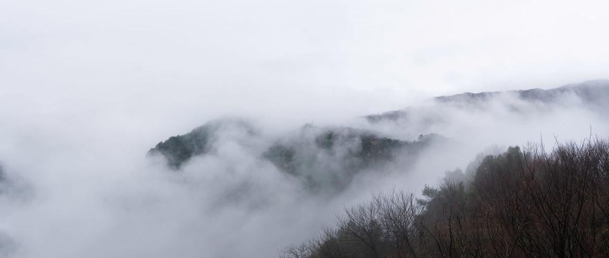 Forest, clouds and fog, travel China Landscape No People Nature Beauty In Nature Travel Mountain Sky Scenics - Nature Tranquil Scene Fog Non-urban Scene Tranquility Environment Day Cloud - Sky Outdoors Hazy  Tree Plant Idyllic Land