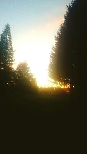 Sunset on the westside santa cruz