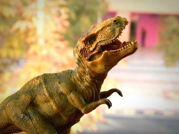 Dinosaur Toys Dinosaur