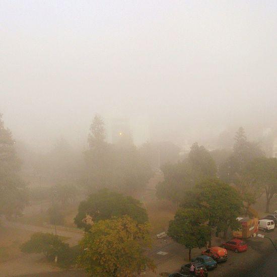 ...El permanente aspectos de nuestras tenues neblinas... CH. B.