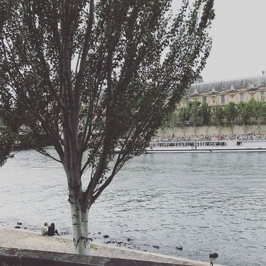 Paris Tree Nature Vacations Cityscapes Water River