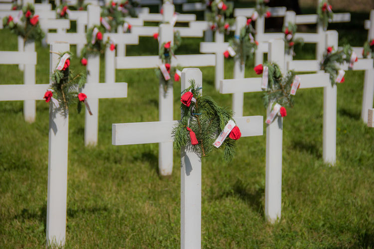 Memorial Day crosses. Canon60d Canonphotography Cross Focus On Foreground Grass Green Memorial Day Poppies  Red Rememberance White