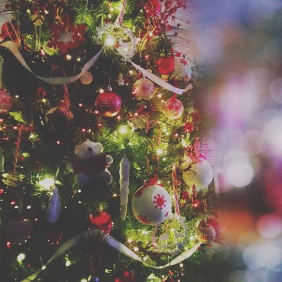 J-3 !!! En mode over Xmas junkie! 😁 Un ourson se cache dans ce sapin... Rhoooo... (et meme deux!) 😁 Jinglebells Noël Christmastree Monbeausapin Instapic Picoftheday Christmaslights Home