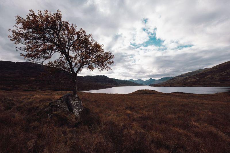 Scotland Sky