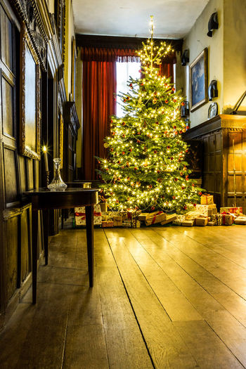 Traditionally decorated Christmas tree in the Great Hall at Chastleton House Christmas Christmas Lights Christmas Trees Festive Decoration Victorian Christmas Xmas Xmas Decorations Xmas Tree Architecture Built Structure Celebration Christmas Christmas Decoration Christmas Decorations Christmas Tree Day Great Hall Home Interior Illuminated Indoors  Jacobean No People Traditional Decorations Tree Wooden Floor