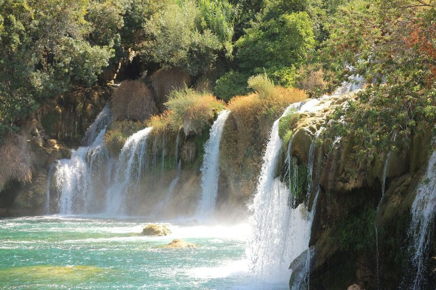 Waterfall Tree Water Nature Motion Beauty In Nature River Scenics Forest Day No People Outdoors Power In Nature Krka National Park Krka Croatia Lost In The Landscape