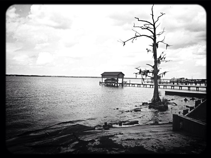 An old familiar place. Pamlico River Landscape_Collection North Carolina