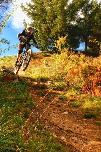 Adventure Club Downhillmountainbiking Remarkablesnz