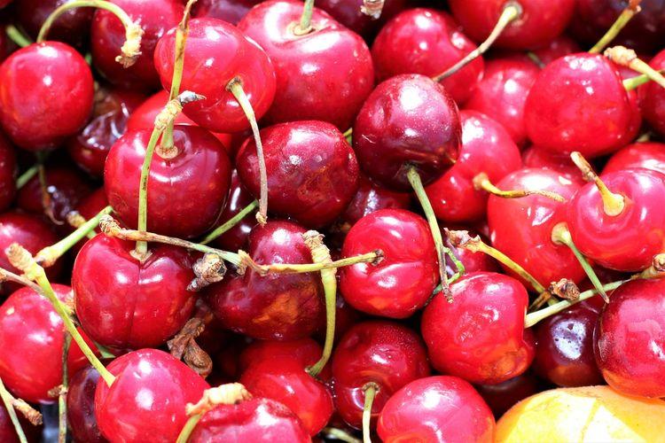 Fruit Red Full