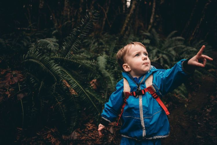 Exploring the forest Boy Toddler  Pointing Childhood One Person Child Children Only Forest Tree Nature One Boy Only Day Outdoors