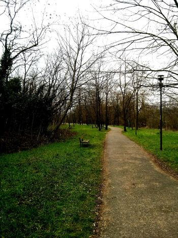 How's The Weather Today? Nuvoloso Passeggiata Freddo Inverno January2015 Parco Relaxing Wintertime Giornate Grige