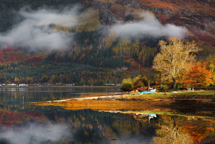 Canon Autumn Autumn Collection Day Fall Great Britain Highlands Highlands Of Scotland Landscape Landscape_Collection Landscape_photography Loch  Loch Ness Nature Nature Nature Photography Nature_collection Outdoors Travel Travel Destinations Travel Photography Travelphotography Uk