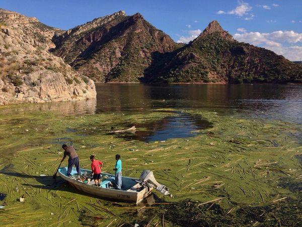 Presa Zimapan Querétaro Hidalgo  Boat Family Leafs Mountains Niceday Trip