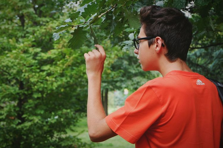 Side view of young man looking at leaf on branch at park