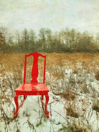 Chair Tree Plant Red Nature No People Winter Day Field Land Tranquility Outdoors Cold Temperature Snow Tranquil Scene