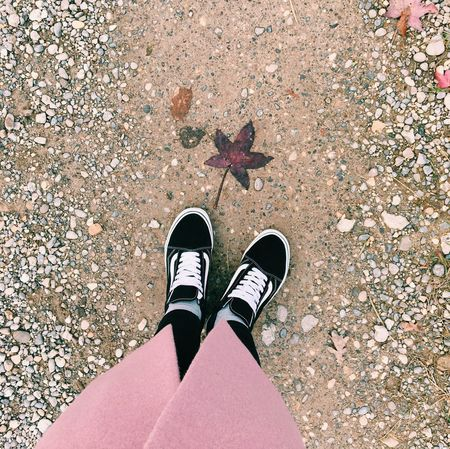 Shoes Sneakers Shoe Low Section Human Leg One Person Real People Leaf Standing High Angle View Personal Perspective Autumn Change Human Body Part Day Outdoors Lifestyles Directly Above Canvas Shoe Nature Adult People