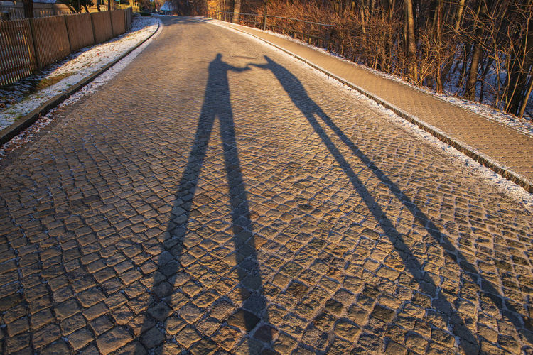 shadow of two guys Shadow Nature Transportation Direction Day Sunlight Outdoors Road Focus On Shadow Men Long Shadow - Shadow Two People Winter The Way Forward Land Snow Tree Cold Temperature Plant Forest