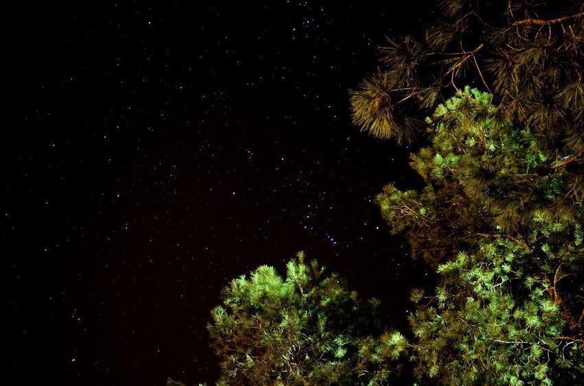 سبحانك ربي الحمد لله Oujda City, Morocco Great Morocco Sky Beautiful Nature Night Nature No People