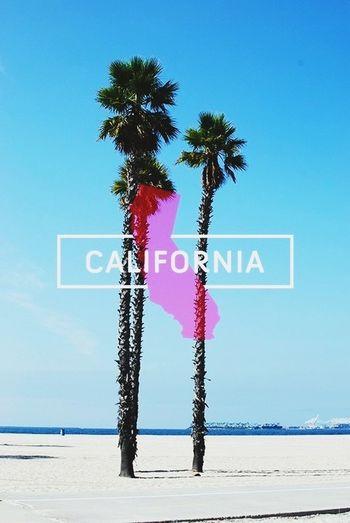 Cali is somewhere I wanna be. California Take Me There