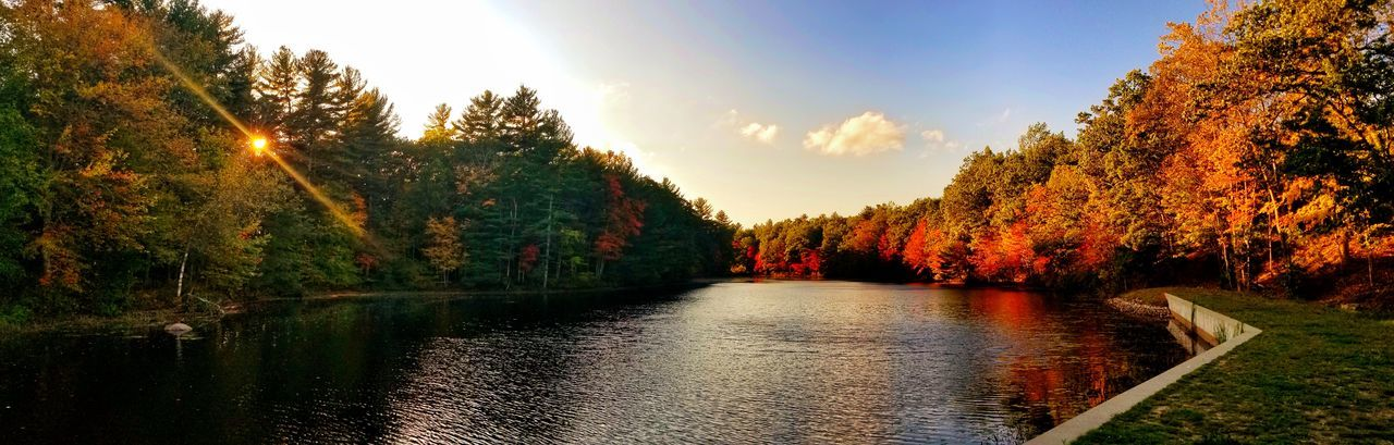 Good evening. .. Outdoors Tree No People Nature Scenics Growth Beauty In Nature Water Sky Day Sunset New England  Tranquility EyeEm Best Shots - Nature EyeEm Nature Lover New England  EyeEm Best Shots Beauty In Nature Nature Leaf Autumn Cloud - Sky Vibrant Color Sunlight Landscape