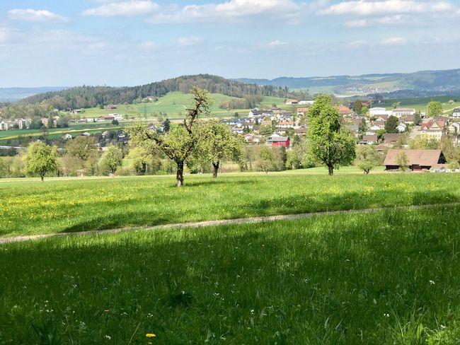 Blick auf Guntershausen
