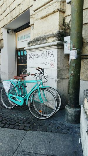 Dynamo Bycicles Bycicle Photography Bycicle Lovers Aquamarine Aquamarine Colour Architectural Detail Architecturephotography Architecture Velostazione Bologna Bolognapostcards Bolognaart