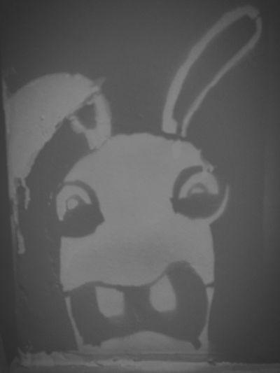 Rabbit Drawing on my Wall Wallart