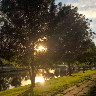 Today's sunset Sunset WeLoveLumia Allumians Lumia Lumia930 Instagrammers Fishing Sunetmadness Hungary Kalocsa Water Light Ig_worldclub Mik Viewmysunset