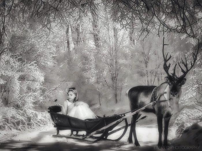 Hoping everyone had a magical Christmas... Black & White Monochrome Blackandwhite Vintage Light And Shadow EyeEm Best Edits Eye4enchanting