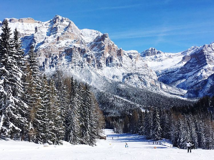 Alta Badia, Dolomites, Italy. Snow Snowsport Sport Snow Sport Scenics White Color Ski Skiing Italy Sport Tree Season  Landscape Winter Weather The Color Of Sport Snow Sports