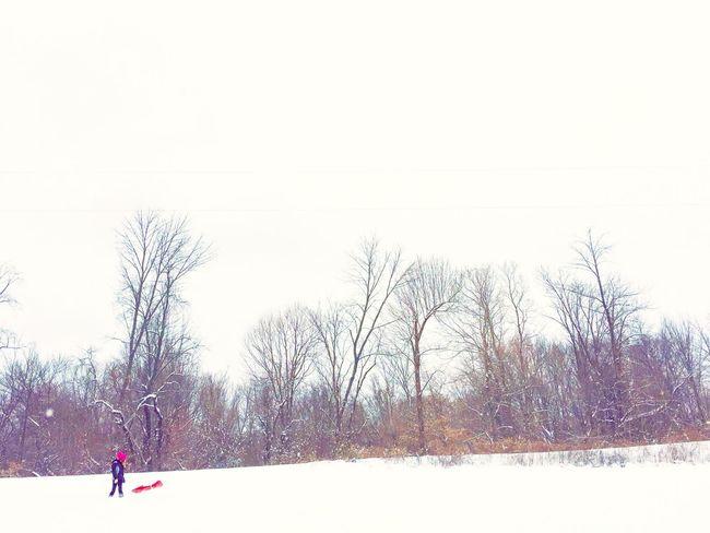 EyeEm Nature Lover Photography Photographer IPhoneography Love EyeEm Best Shots Winter Snow Cold Snowpocalypse