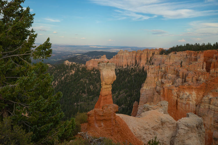 Bryce Canyon at sunset Nature No People Travel Destinations Rock Beauty In Nature Bryce Canyon Utah Sunset Travel Scenics - Nature Non-urban Scene Rock Formation Tourism Tranquility Environment Tree Canyon Rock - Object Tranquil Scene Mountain Geology Landscape Physical Geography Outdoors Eroded
