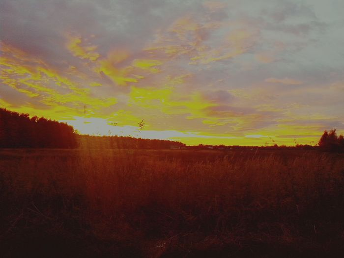 Clouds Sunset Sunset #sun #clouds #skylovers #sky #nature #beautifulinnature #naturalbeauty #photography #landscape