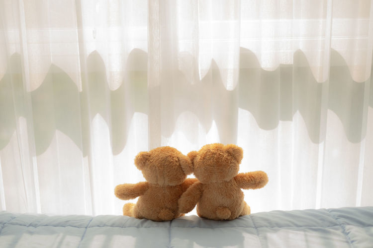 couple bear doll sitting and hug on the bed near the window and curtain Couple Love Hug Sweet Bear Doll Toy Home Room Concept Cute Childhood Brown Happy Bed Soft Furry Gift Relax Sleep White Waiting Window Blanket Sitting Adorable Curtain Child Background Comfort Bedroom Lifestyle Morning Teddy Care Two Romantic Holding Heart Lovable Friend Relationship Valentine Emotion Sweetness Sit Together Darling Emotional